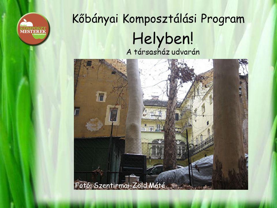 Kőbányai Komposztálási Program Helyben! A társasház udvarán Fotó: Szentirmai-Zöld Máté