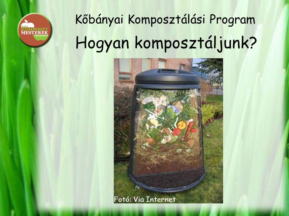 Kőbányai Komposztálási Program Hogyan komposztáljunk? Fotó: Via Internet