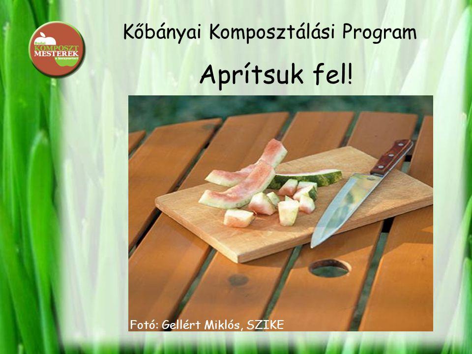 Kőbányai Komposztálási Program Aprítsuk fel! Fotó: Gellért Miklós, SZIKE