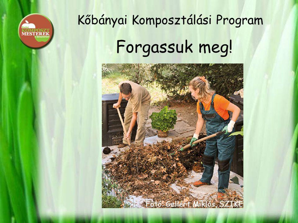 Kőbányai Komposztálási Program Forgassuk meg! Fotó: Gellért Miklós, SZIKE