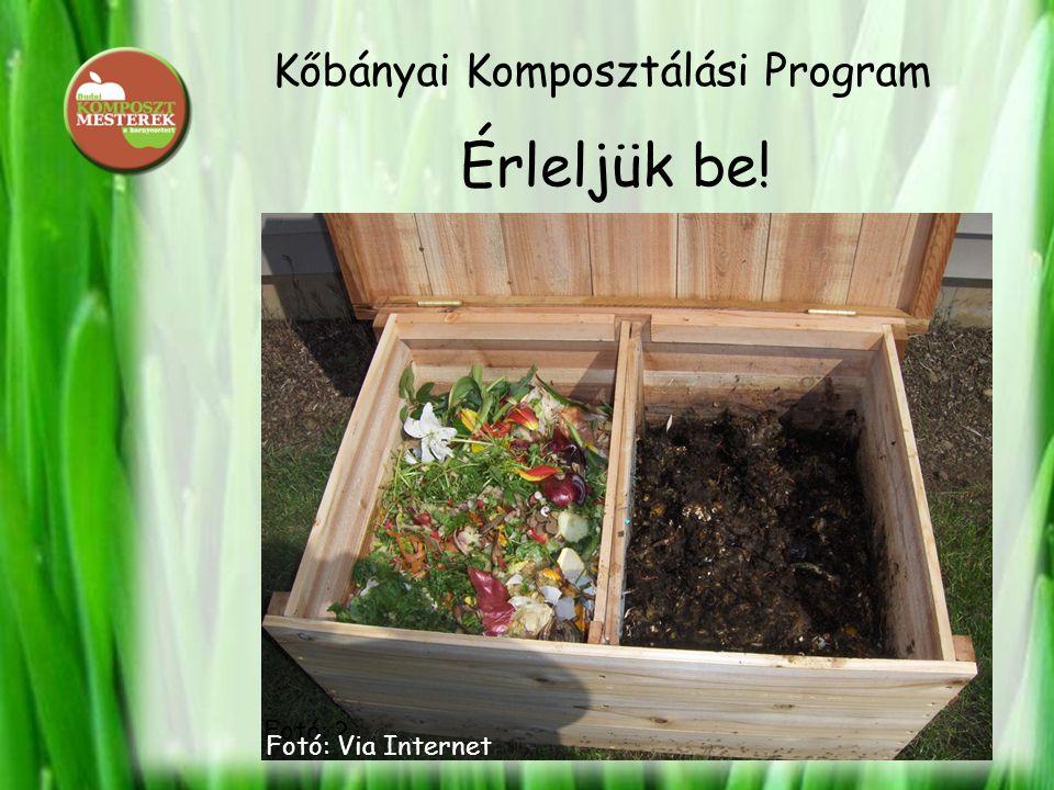 Kőbányai Komposztálási Program Érleljük be! Fotó: ? Fotó: Via Internet