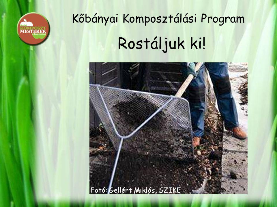 Kőbányai Komposztálási Program Rostáljuk ki! Fotó: Gellért Miklós, SZIKE