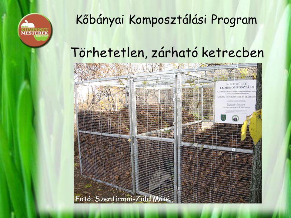 Kőbányai Komposztálási Program Törhetetlen, zárható ketrecben Fotó: Szentirmai-Zöld Máté