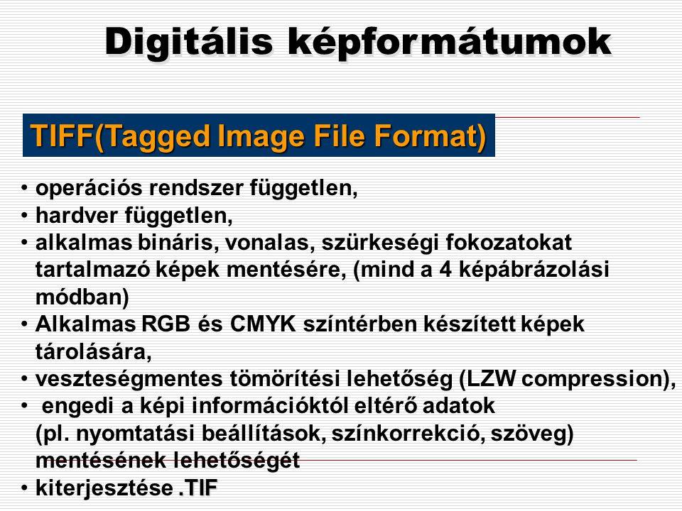 Digitális képformátumok •milyen módon szeretnénk a képet megjeleníteni (nyomtatás, képernyő) •milyen további platformokon akarjuk a képet megjeleníten