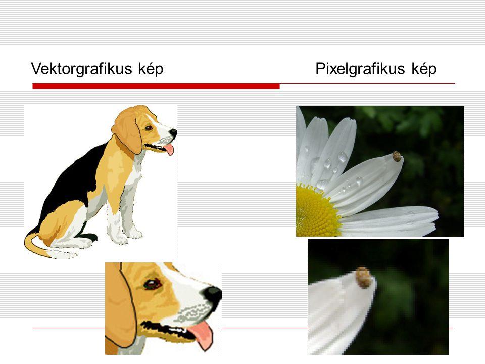 Digitális kép típusai  Vektorgrafikus kép:  elem vagy alakzat koordinátákkal matematikai képletekkel adható meg  Pixelgrafikus kép:  képpontokból