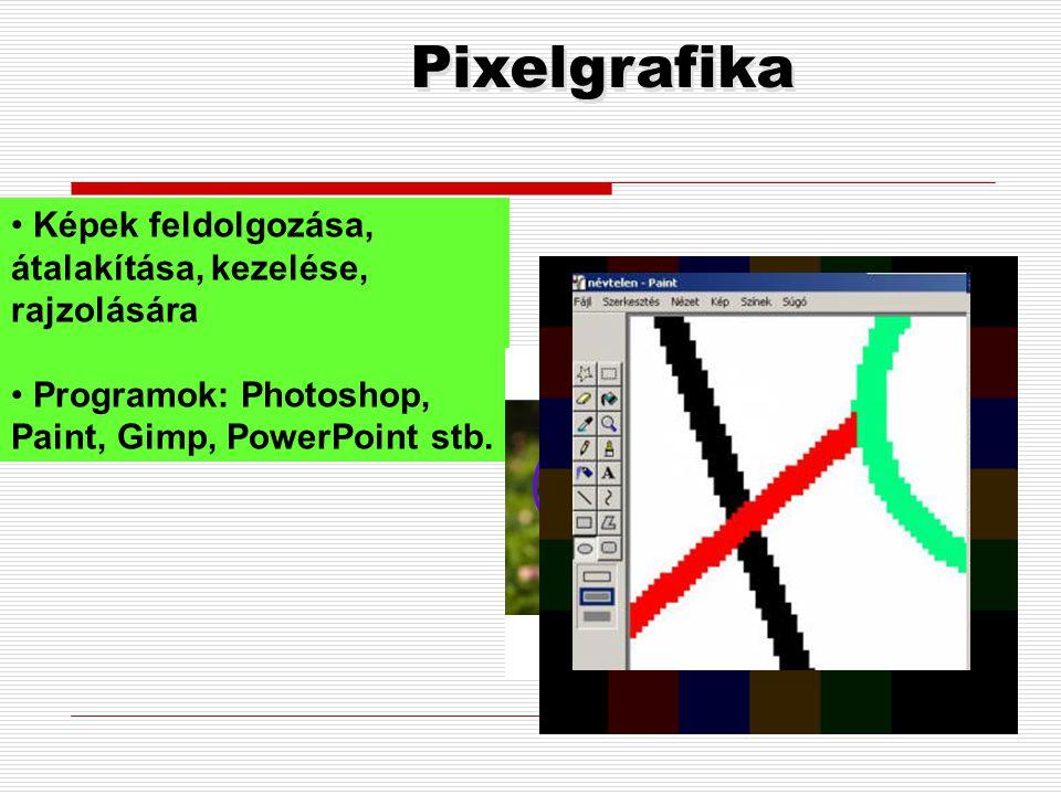 Vektorgrafika  Jellemzői:  a megjelenített kép elemeit a számítógép matematikailag leírható vonalakra görbékre bontja, majd ezek egyenleteit tárolja