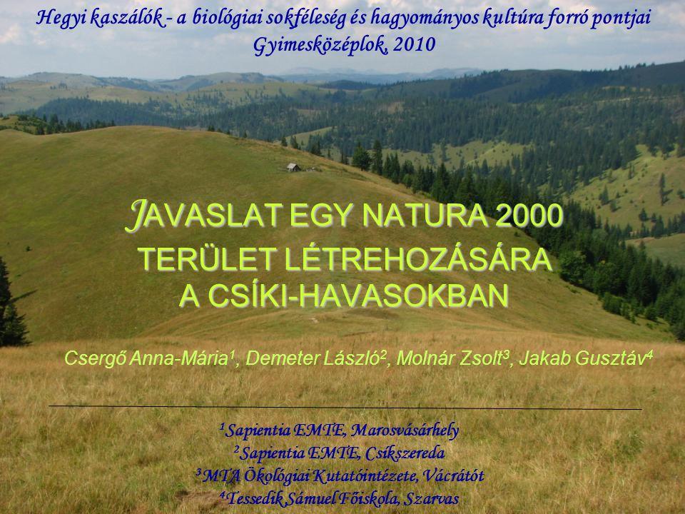 91Q0 Western Carpathian calcicolous Pinus sylvestris forests 91Q0 A Nyugati-Kárpátok mészkedvelő erdeifenyő (Pinus sylvestris)-erdői Előfordulás: Kászon patak völgye