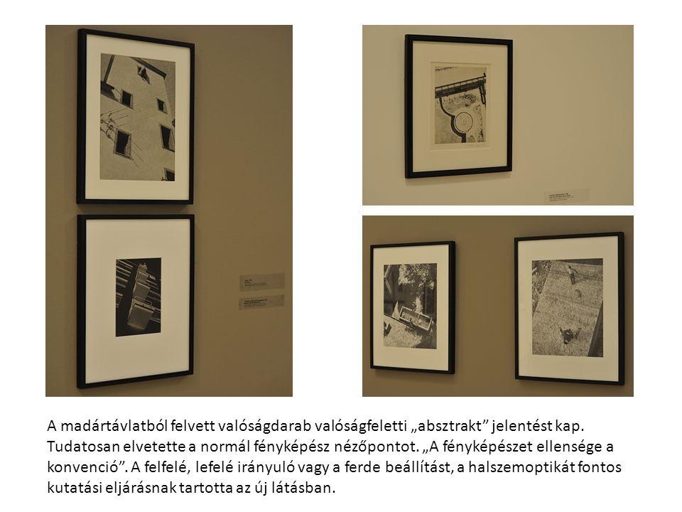 Saját találmánya a fotoplasztika – montázs és rajz ötvözete –, ahol a képkivágatokat a perspektivikus rövidülés alapján helyezte el, segédvonalakkal fokozva a hatást.