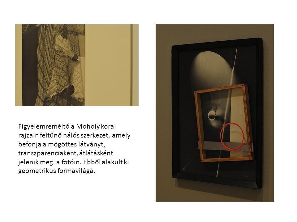 """Áthatolást nemcsak fotóin látni. """"Átjárás van festményei és foto/gramja/i, kompozíciói között is."""