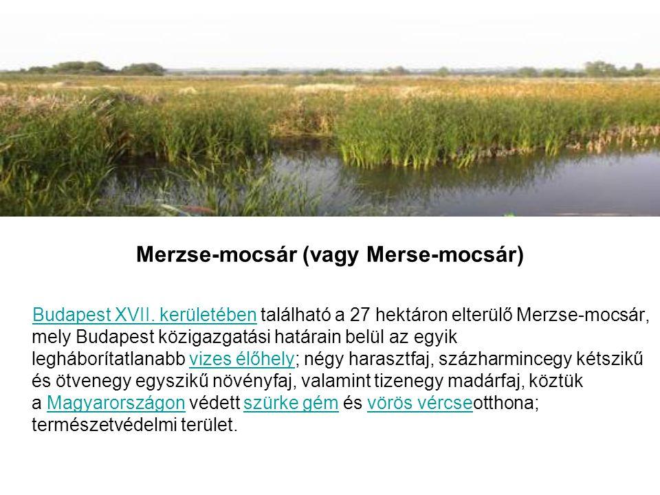 Merzse-mocsár (vagy Merse-mocsár) Budapest XVII.