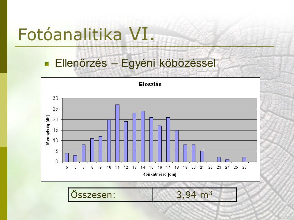 Ellenőrzés – Egyéni köbözéssel Összesen:3,94 m 3 Fotóanalitika VI.