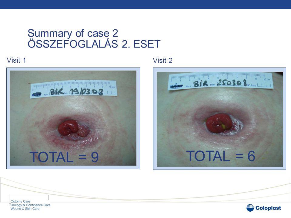 Summary of case 2 ÖSSZEFOGLALÁS 2. ESET TOTAL = 9 TOTAL = 6 Visit 1 Visit 2