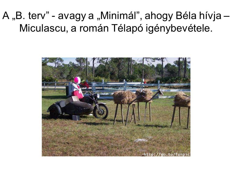 """A Zorró utcai óvoda két tartalékost vonultatott be Béla kisegítésére, így az """"A."""