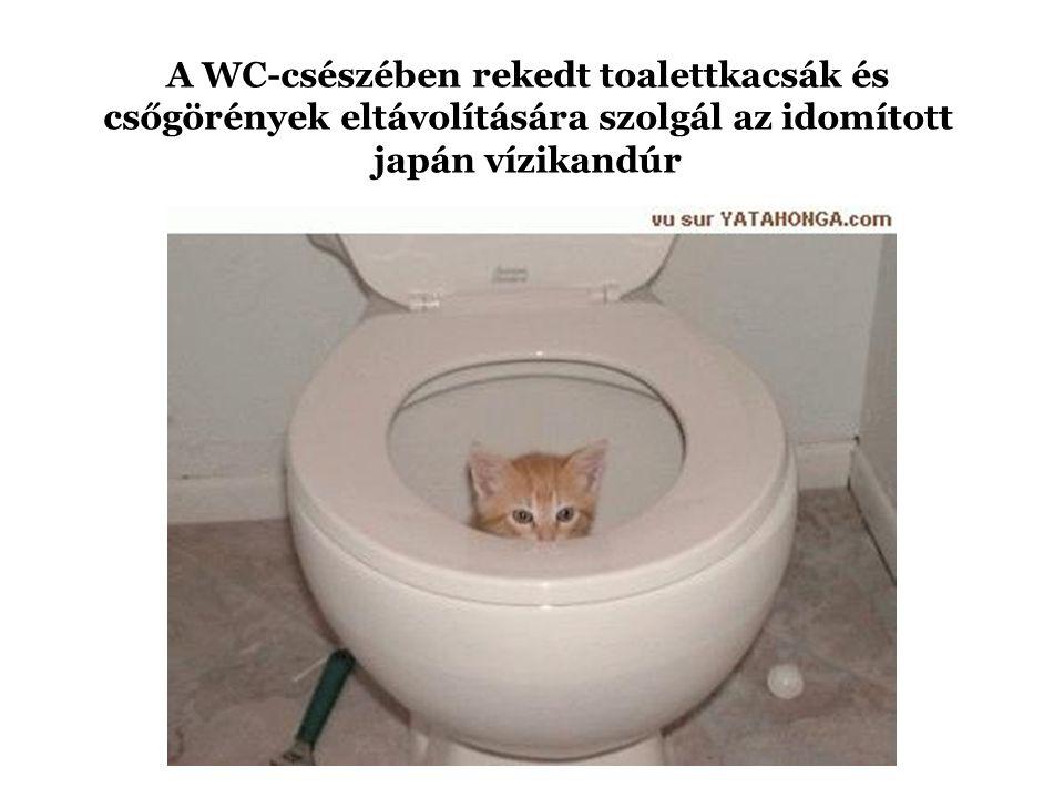 A WC-csészében rekedt toalettkacsák és csőgörények eltávolítására szolgál az idomított japán vízikandúr