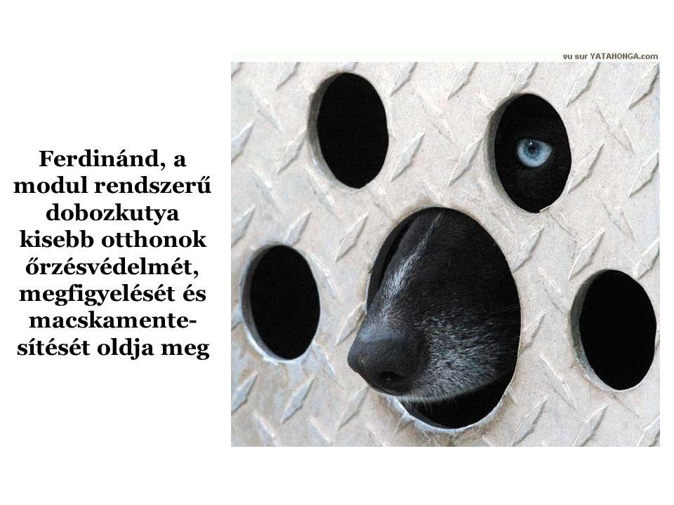 Csúfolódásért állították ki Pötyit, a hondurasi jégkorongválogatott kabalakutyáját (a felvételen a Nílusi Görények kabalaállatával látható)