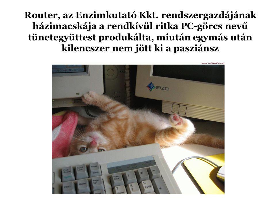Router, az Enzimkutató Kkt.