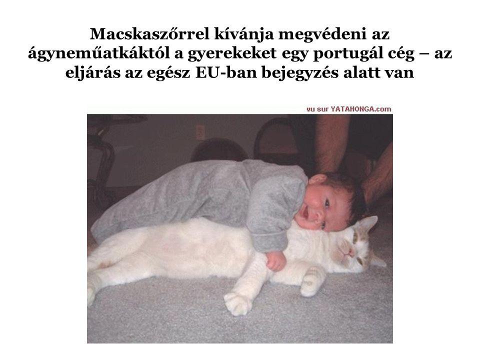 Macskafejekkel nyomósította követelését egy zsaroló Felső-Luxemburgban.
