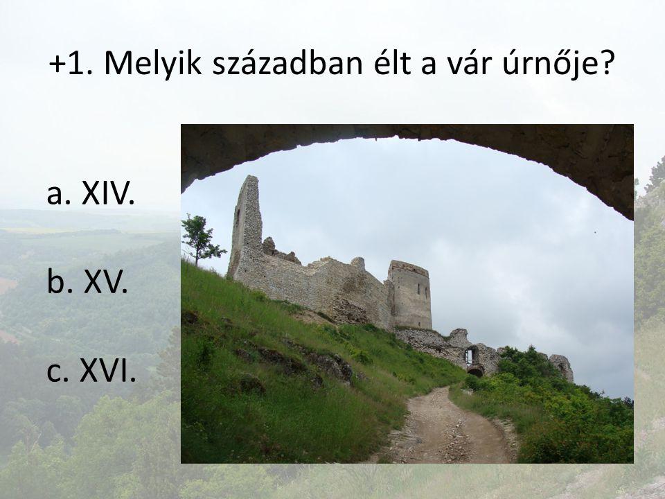 +1. Melyik században élt a vár úrnője? a. XIV. b. XV. c. XVI.