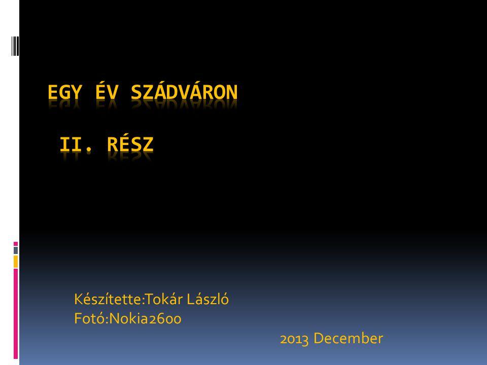 Készítette:Tokár László Fotó:Nokia2600 2013 December