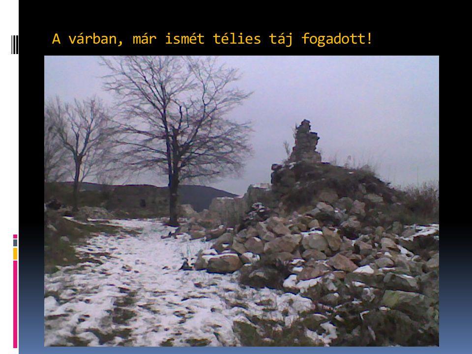 A várban, már ismét télies táj fogadott!