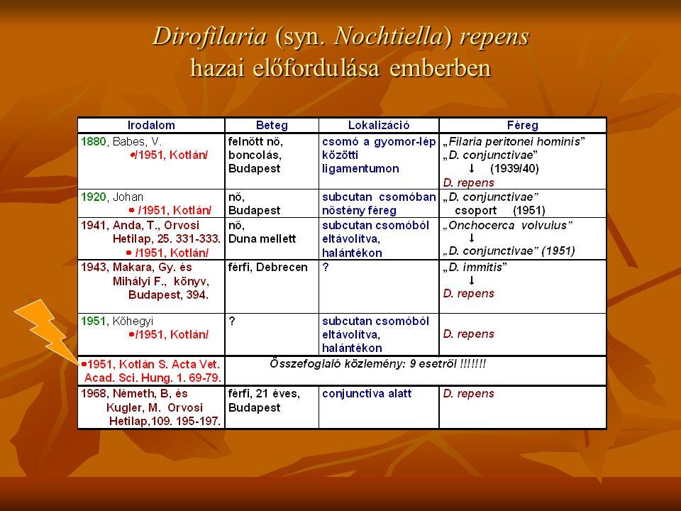 Dirofilaria (syn. Nochtiella) repens hazai előfordulása emberben