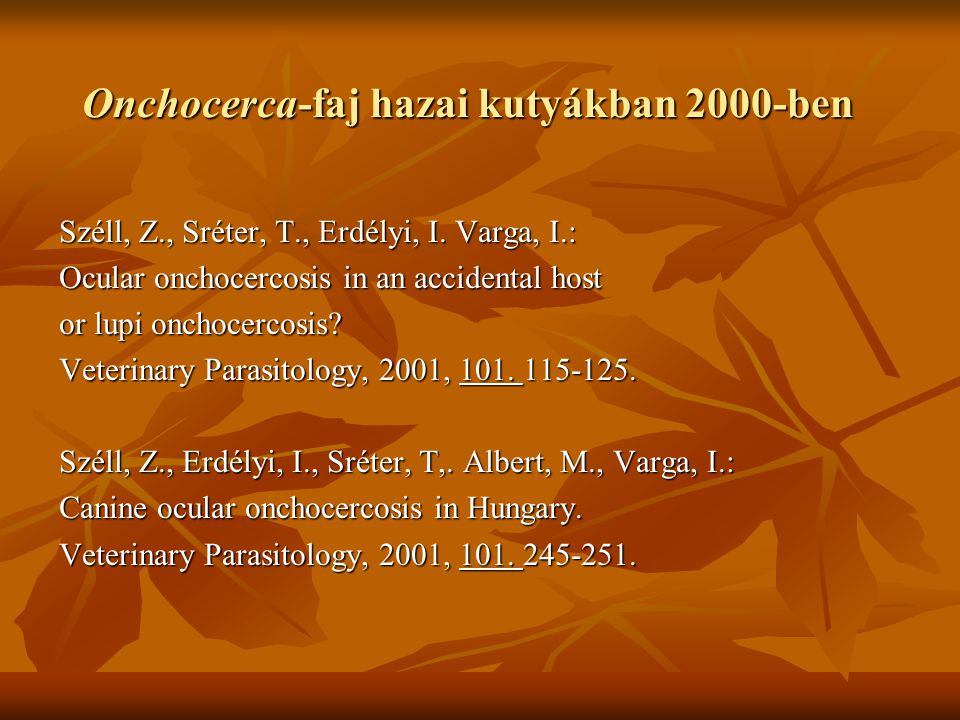 Onchocerca-faj hazai kutyákban 2000-ben Széll, Z., Sréter, T., Erdélyi, I. Varga, I.: Ocular onchocercosis in an accidental host or lupi onchocercosis