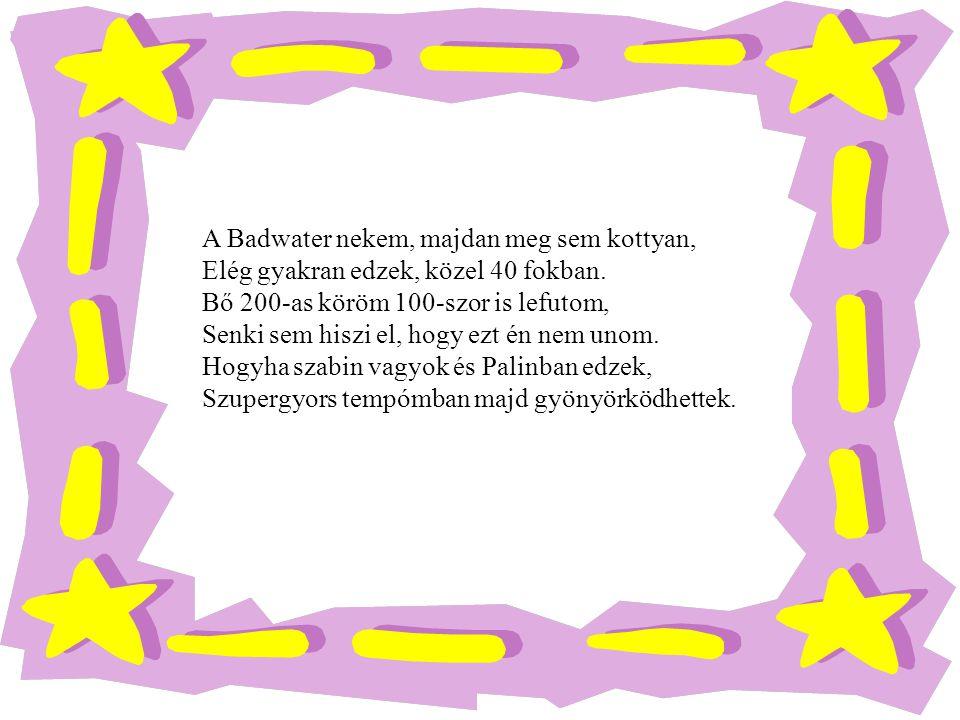 Rudolf Tamás