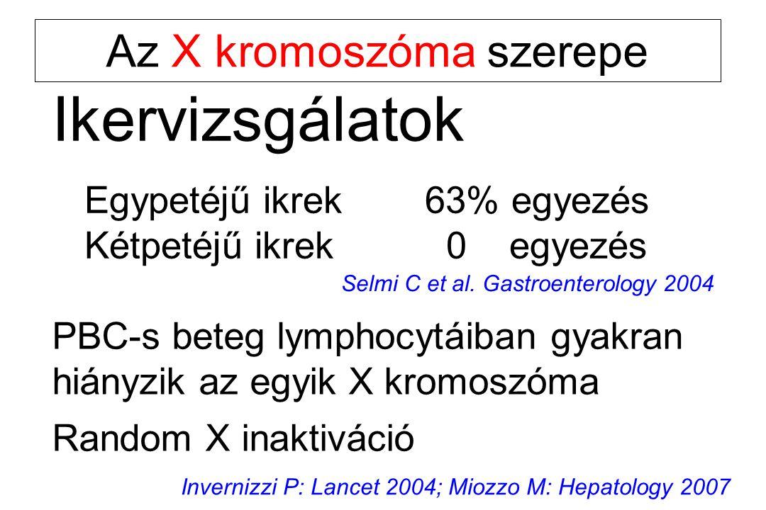 Ikervizsgálatok Egypetéjű ikrek63% egyezés Kétpetéjű ikrek 0 egyezés Selmi C et al. Gastroenterology 2004 Az X kromoszóma szerepe PBC-s beteg lymphocy