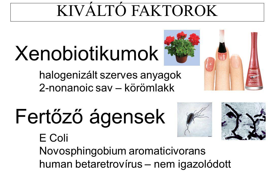 KIVÁLTÓ FAKTOROK Xenobiotikumok halogenizált szerves anyagok 2-nonanoic sav – körömlakk Fertőző ágensek E Coli Novosphingobium aromaticivorans human b