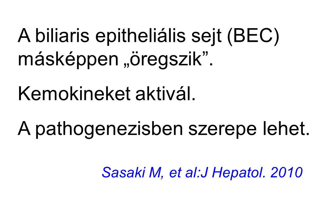"""A biliaris epitheliális sejt (BEC) másképpen """"öregszik"""". Kemokineket aktivál. A pathogenezisben szerepe lehet. Sasaki M, et al:J Hepatol. 2010"""