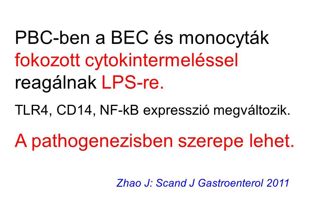 PBC-ben a BEC és monocyták fokozott cytokintermeléssel reagálnak LPS-re. TLR4, CD14, NF-kB expresszió megváltozik. A pathogenezisben szerepe lehet. Zh