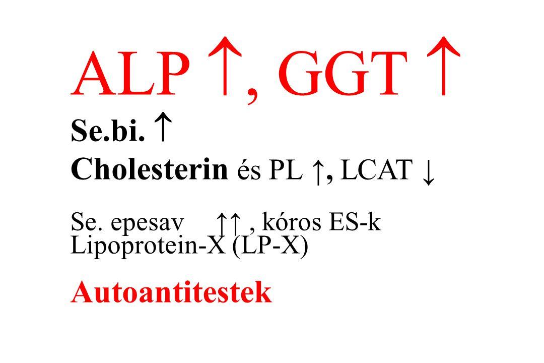 ALP , GGT  Se.bi.  Cholesterin és PL ↑, LCAT ↓ Se. epesav↑↑, kóros ES-k Lipoprotein-X (LP-X) Autoantitestek