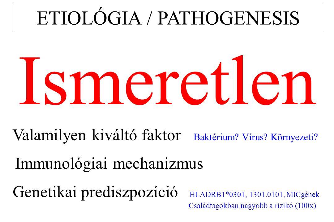 ETIOLÓGIA / PATHOGENESIS Ismeretlen Valamilyen kiváltó faktor Baktérium? Vírus? Környezeti? Immunológiai mechanizmus Genetikai prediszpozíció HLADRB1*