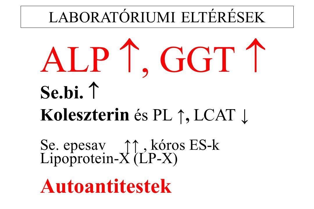 LABORATÓRIUMI ELTÉRÉSEK ALP , GGT  Se.bi.  K oleszterin és PL ↑, LCAT ↓ Se. epesav↑↑, kóros ES-k Lipoprotein-X (LP-X) Autoantitestek
