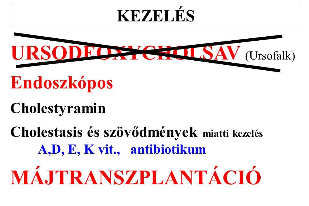 KEZELÉS URSODEOXYCHOLSAV (Ursofalk) Endoszkópos Cholestyramin Cholestasis és szövődmények miatti kezelés A,D, E, K vit., antibiotikum MÁJTRANSZPLANTÁC