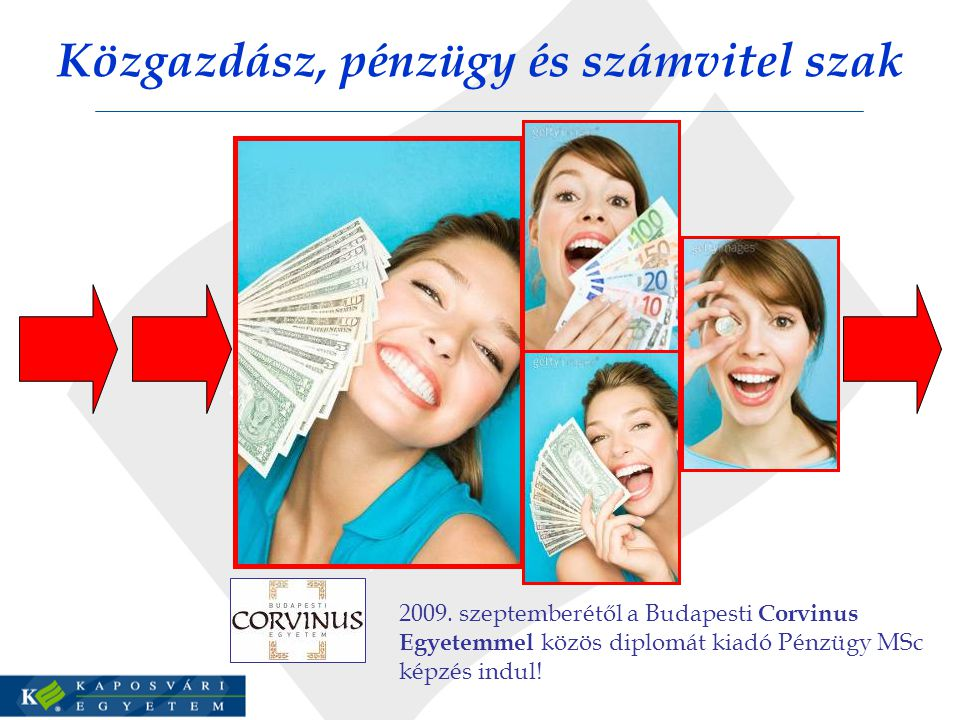 Közgazdász, pénzügy és számvitel szak 2009.