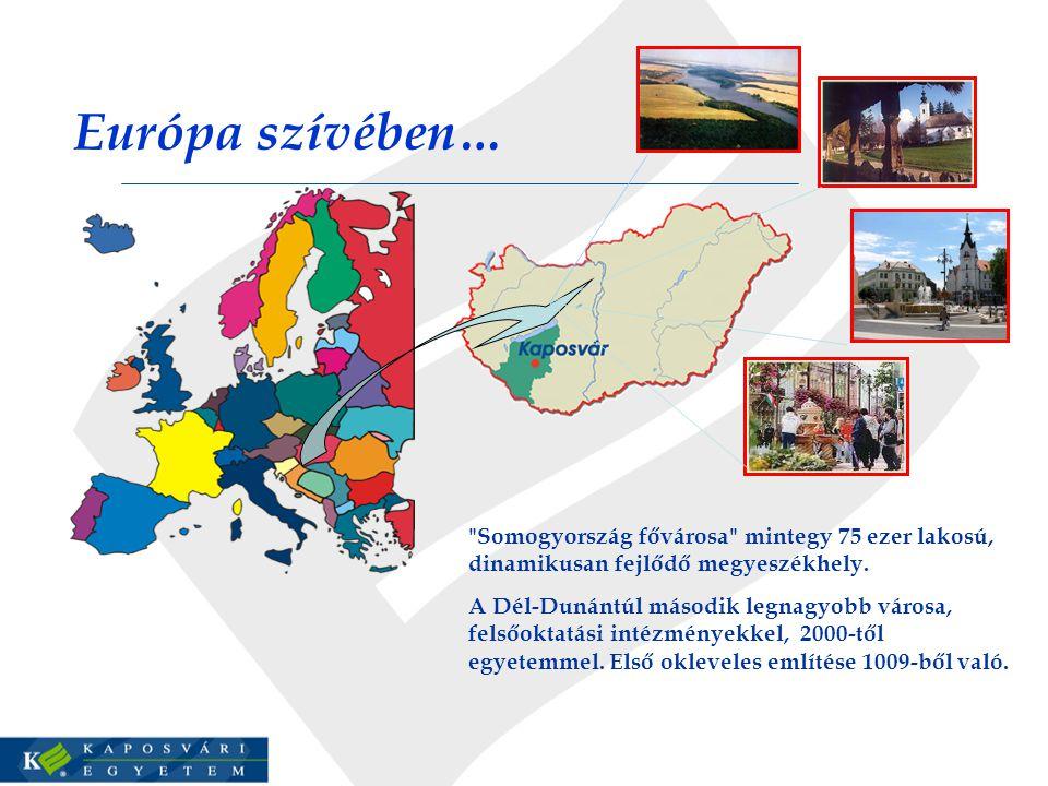 Európa szívében… Somogyország fővárosa mintegy 75 ezer lakosú, dinamikusan fejlődő megyeszékhely.