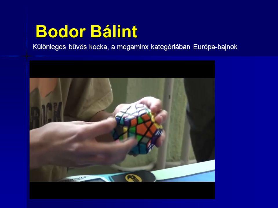 Különleges bűvös kocka, a megaminx kategóriában Európa-bajnok Bodor Bálint