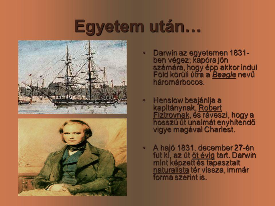Egyetem után… •D•D•D•Darwin az egyetemen 1831- ben végez; kapóra jön számára, hogy épp akkor indul Föld körüli útra a Beagle nevű háromárbocos. •H•H•H