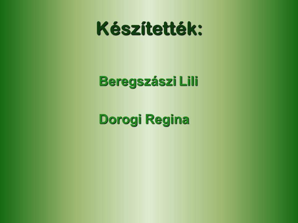 Készítették: Beregszászi Lili Dorogi Regina Dorogi Regina