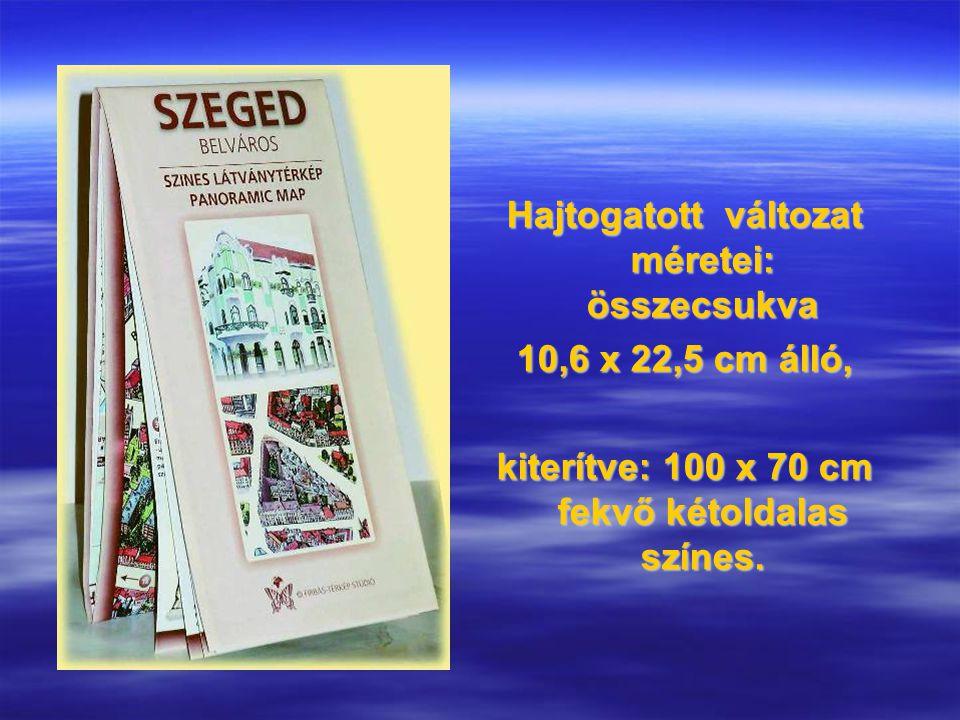 MAI HAZAI LÁTVÁNYTÉRKÉP MINTÁK Pécs világörökségi emlékei szürke panorámagrafikai térképe 2008