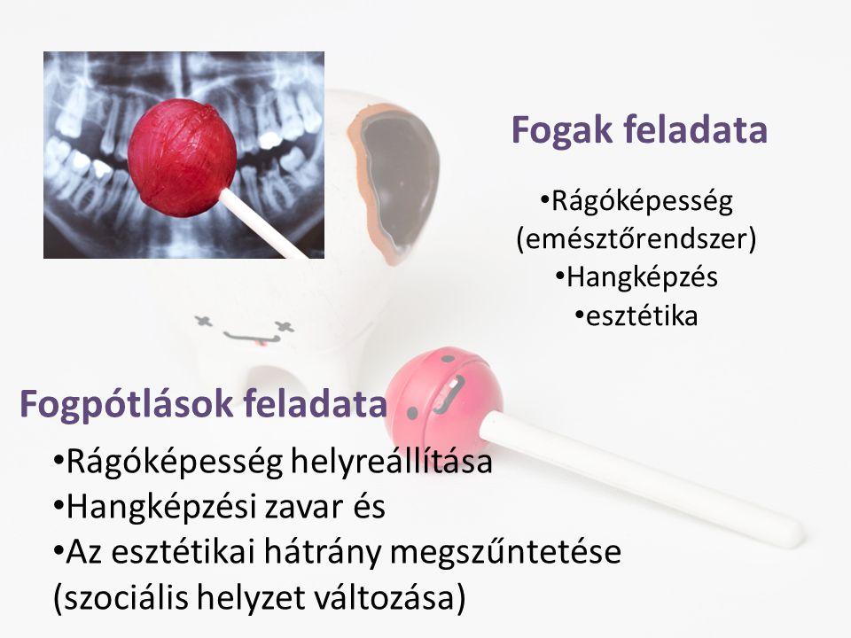 Fogak feladata • Rágóképesség (emésztőrendszer) • Hangképzés • esztétika Fogpótlások feladata • Rágóképesség helyreállítása • Hangképzési zavar és • A