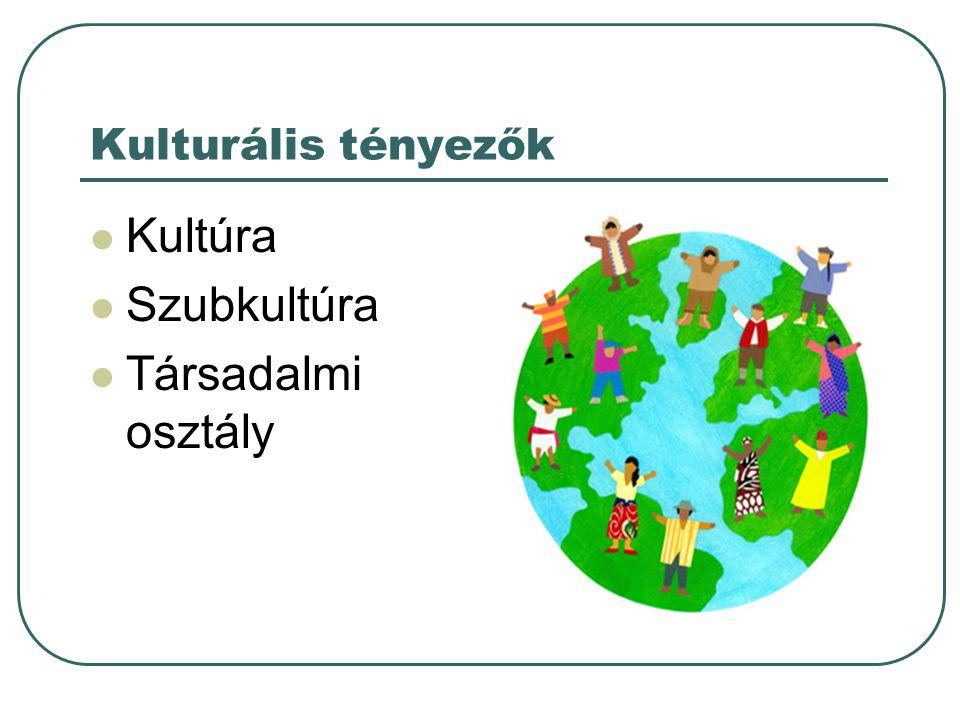 Kulturális tényezők  Kultúra  Szubkultúra  Társadalmi osztály