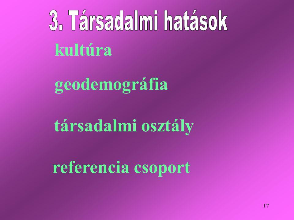 17 kultúra társadalmi osztály geodemográfia referencia csoport