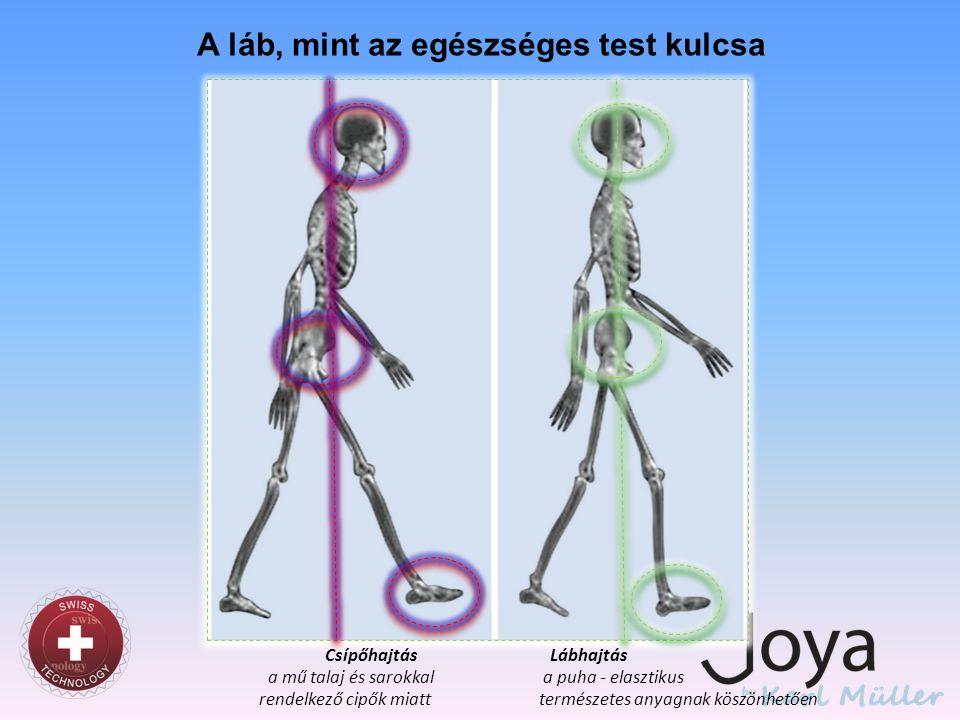 Circulus vitiosus Csípőmotor Lábmotor Hátráltatva lesz Mivel a lábmotor hátráltatva lesz, így a csípőmotor erősebben üzemel Mivel a csípőmotor erősebben üzemel, a test előre dől, és a lábmotor mozgása korlátozódik Erősebben üzemel Magas sarkú cipők és a rossz talaj blokkolják láb szenzo-motoros funkcióját