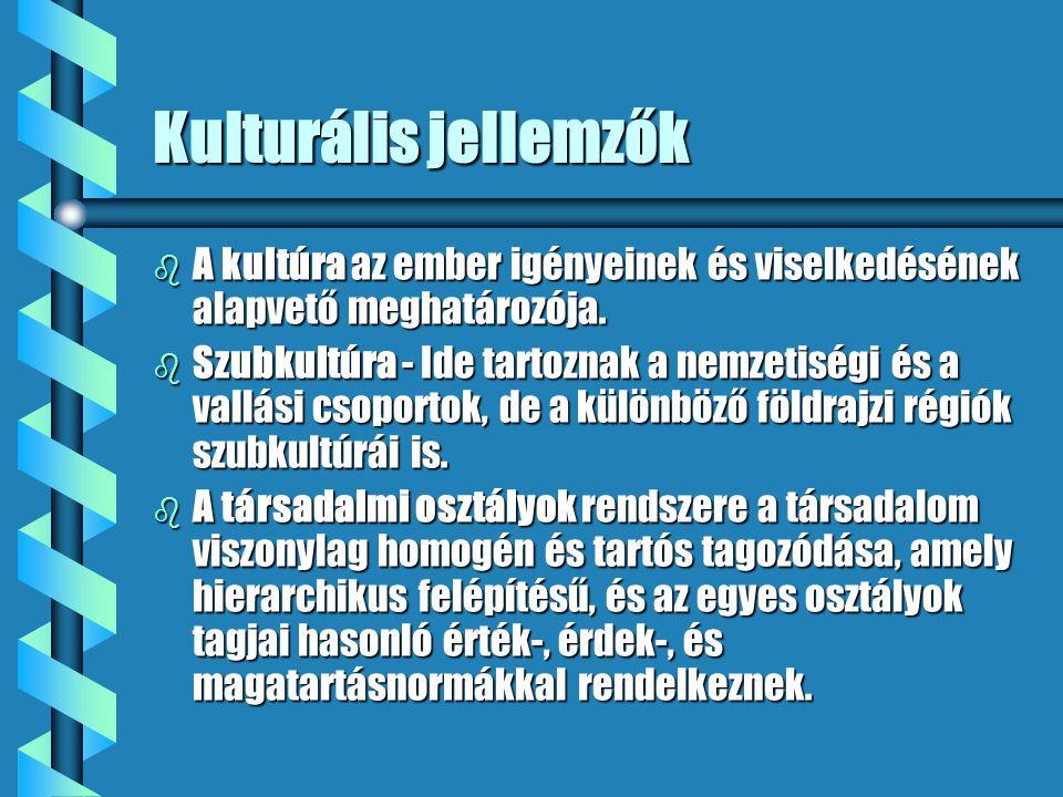 Kulturális jellemzők b A kultúra az ember igényeinek és viselkedésének alapvető meghatározója. b Szubkultúra - Ide tartoznak a nemzetiségi és a vallás
