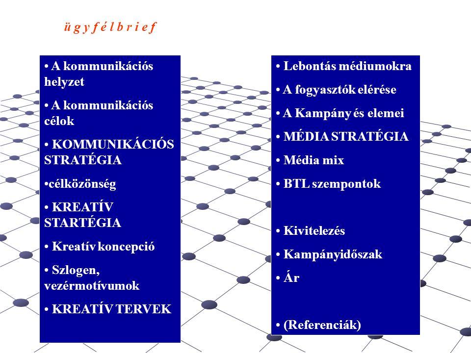 ü g y f é l b r i e f • A kommunikációs helyzet • A kommunikációs célok • KOMMUNIKÁCIÓS STRATÉGIA •célközönség • KREATÍV STARTÉGIA • Kreatív koncepció