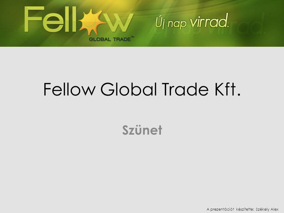 Fellow Global Trade Kft. Szünet A prezentációt készítette: Székely Alex