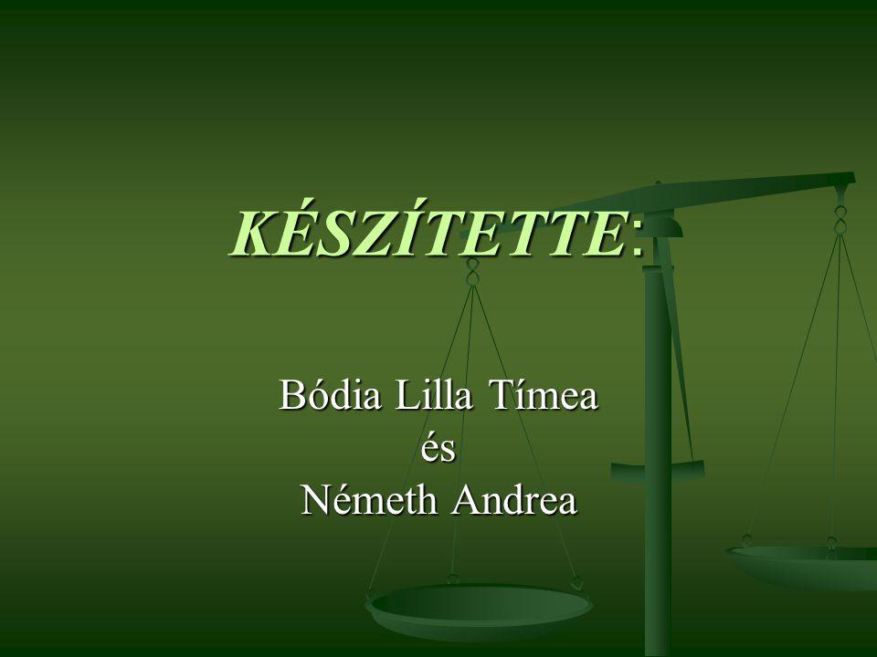 KÉSZÍTETTE : Bódia Lilla Tímea és Németh Andrea