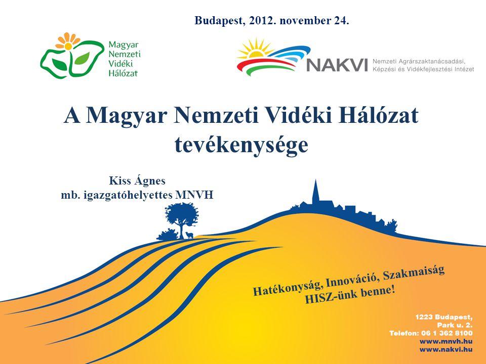 A Magyar Nemzeti Vidéki Hálózat tevékenysége Kiss Ágnes mb.